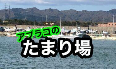 北海道の釣りで、効率良くアブラコのたまり場をリサーチするポイント