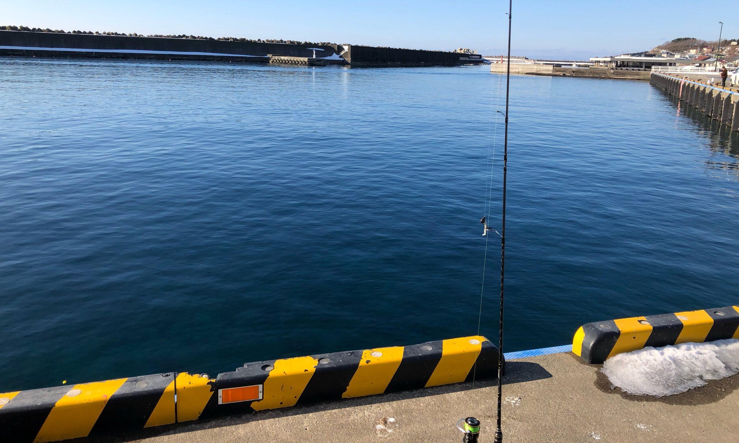 八雲町熊石漁港釣りホッケ冬1月