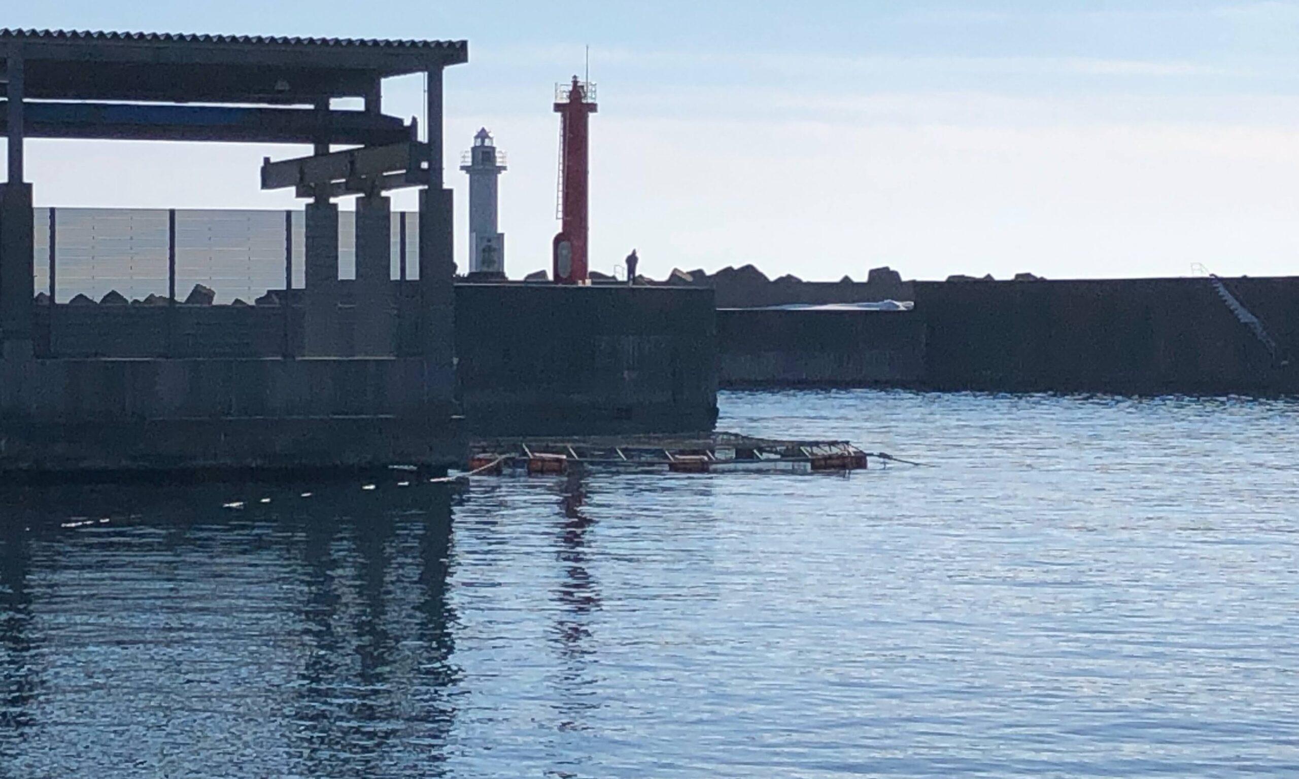 熊石漁港 釣り ホッケ 冬 1月