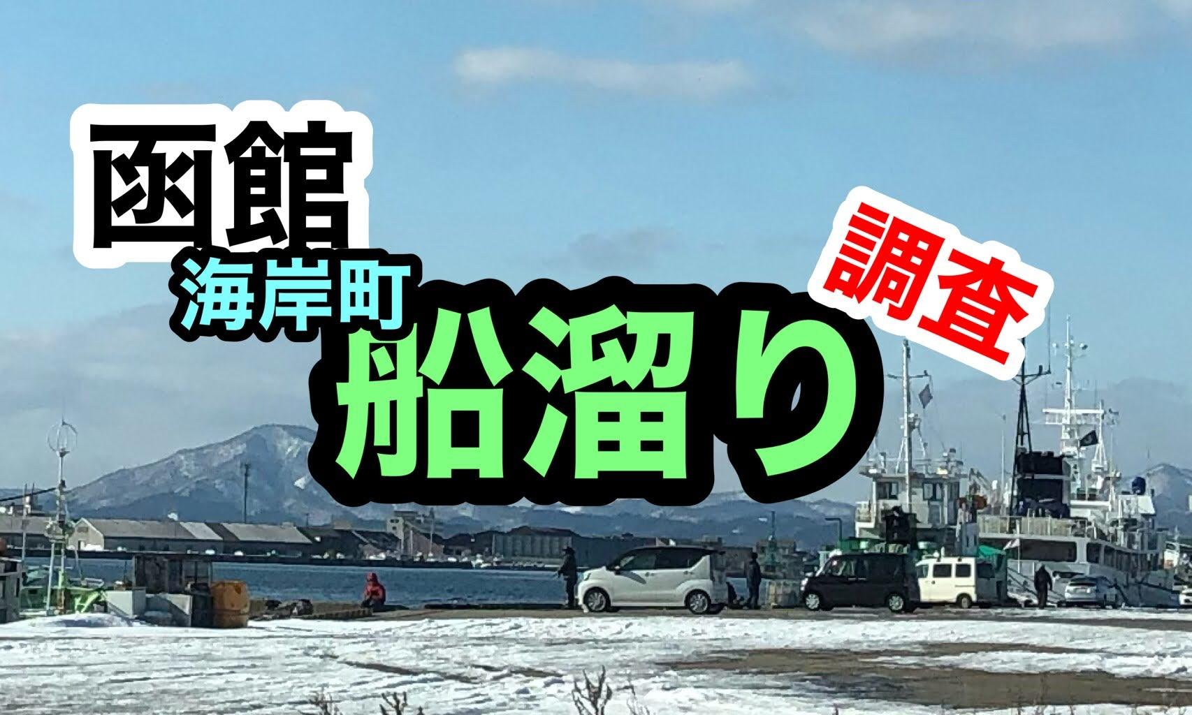 函館港海岸町船溜まり釣り調査2021年1月23日