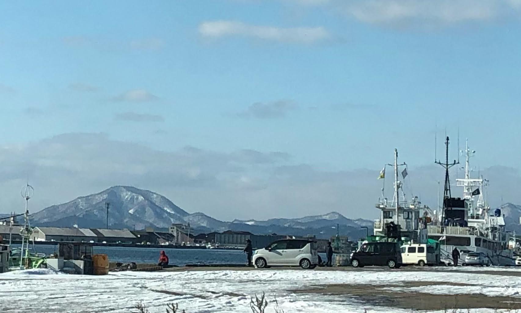 函館港海岸町船だまり(釣り)クリガニ