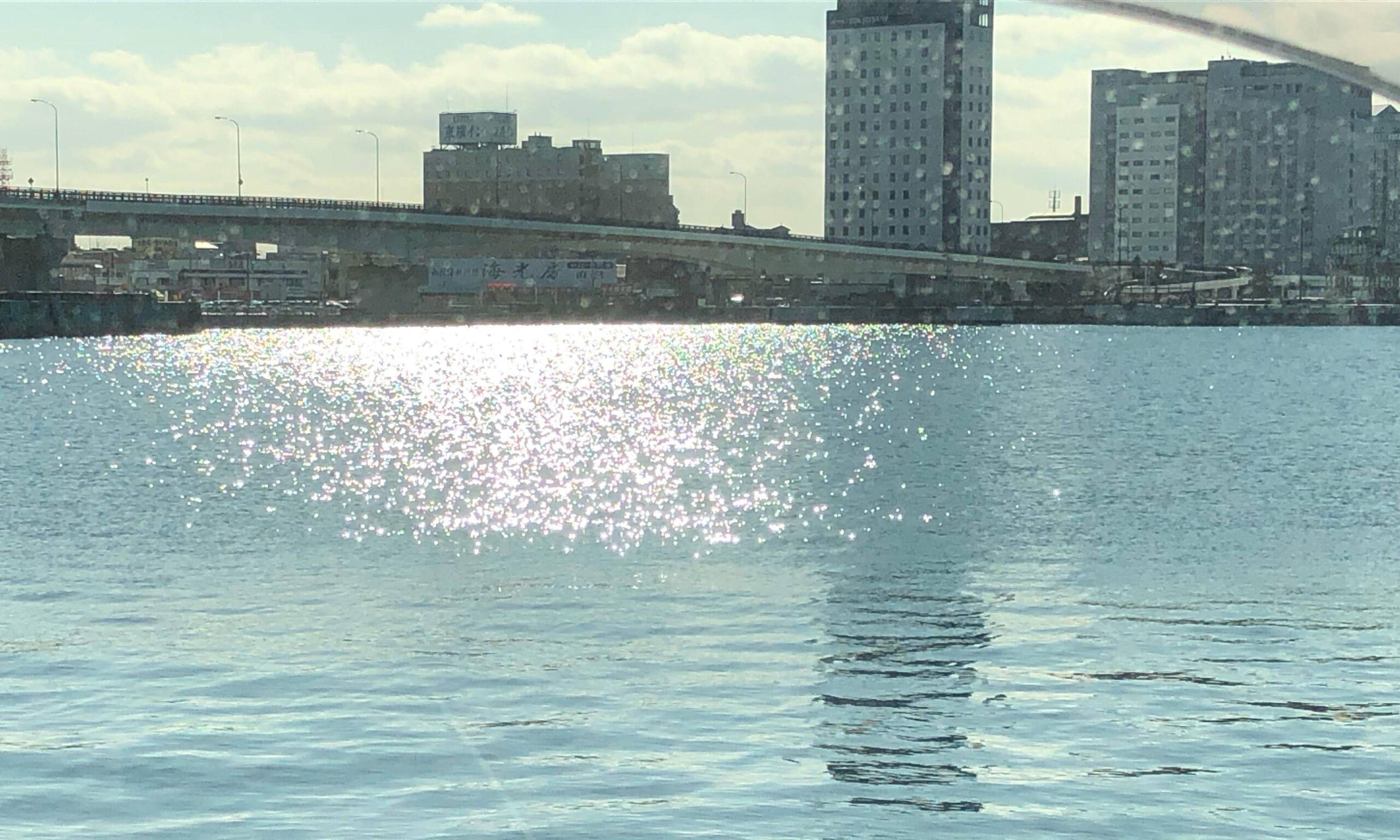 函館港海岸町船溜まり(釣り)クリガニ