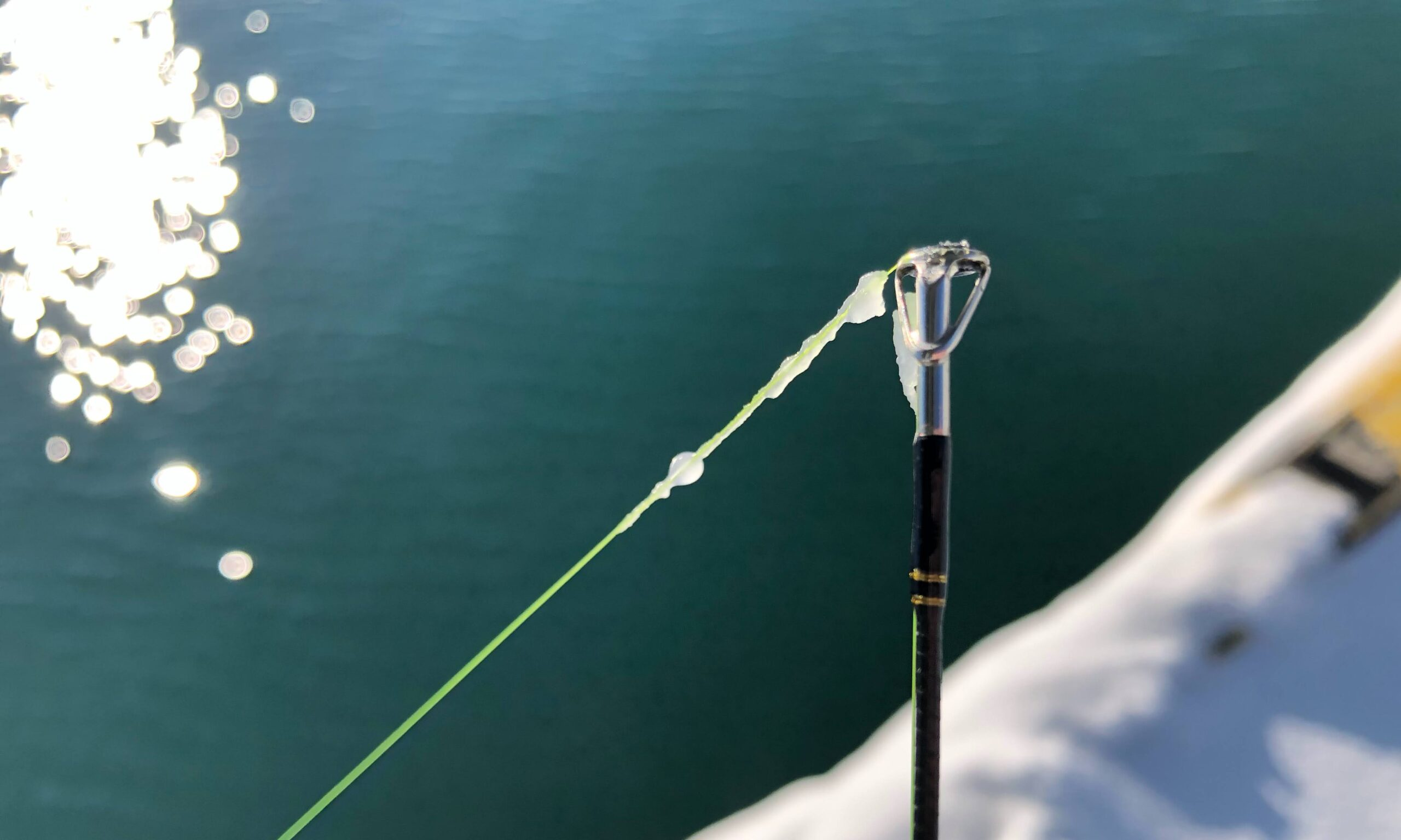 釣り 凍りつく穂先