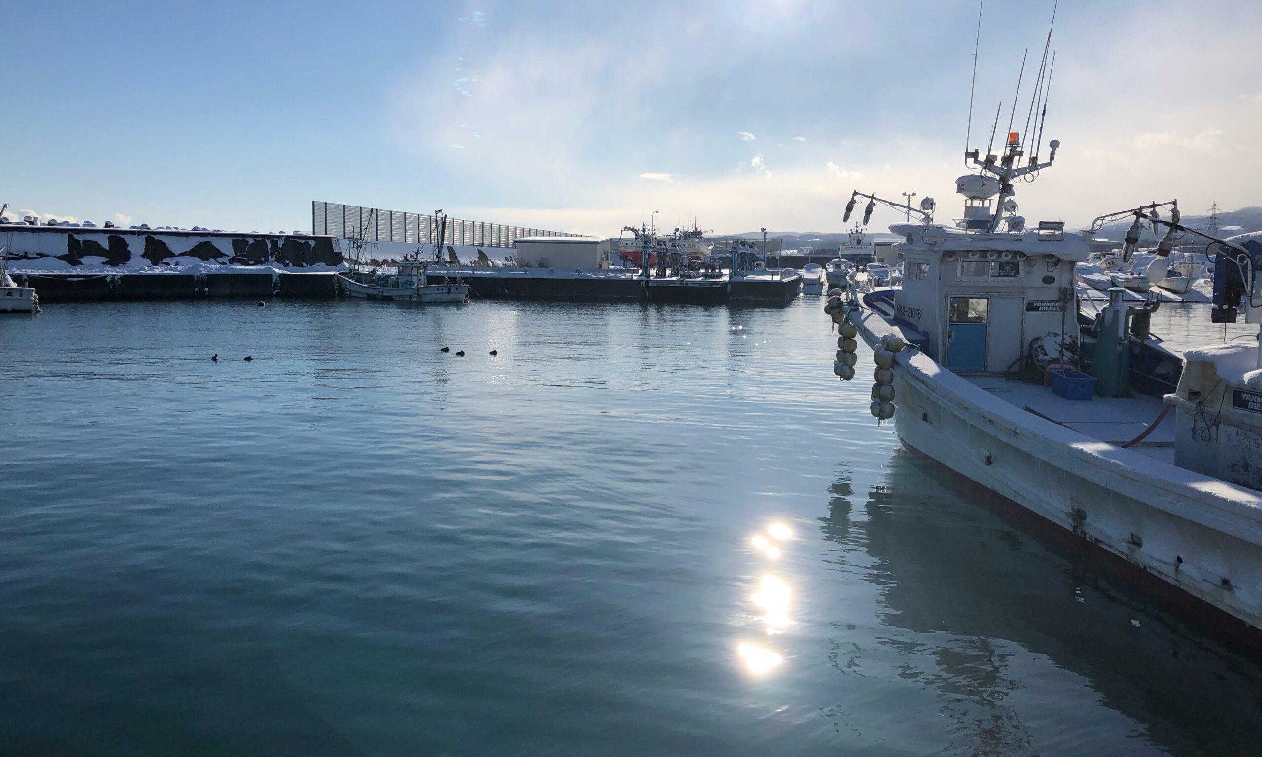 八雲漁港 船揚げ場側