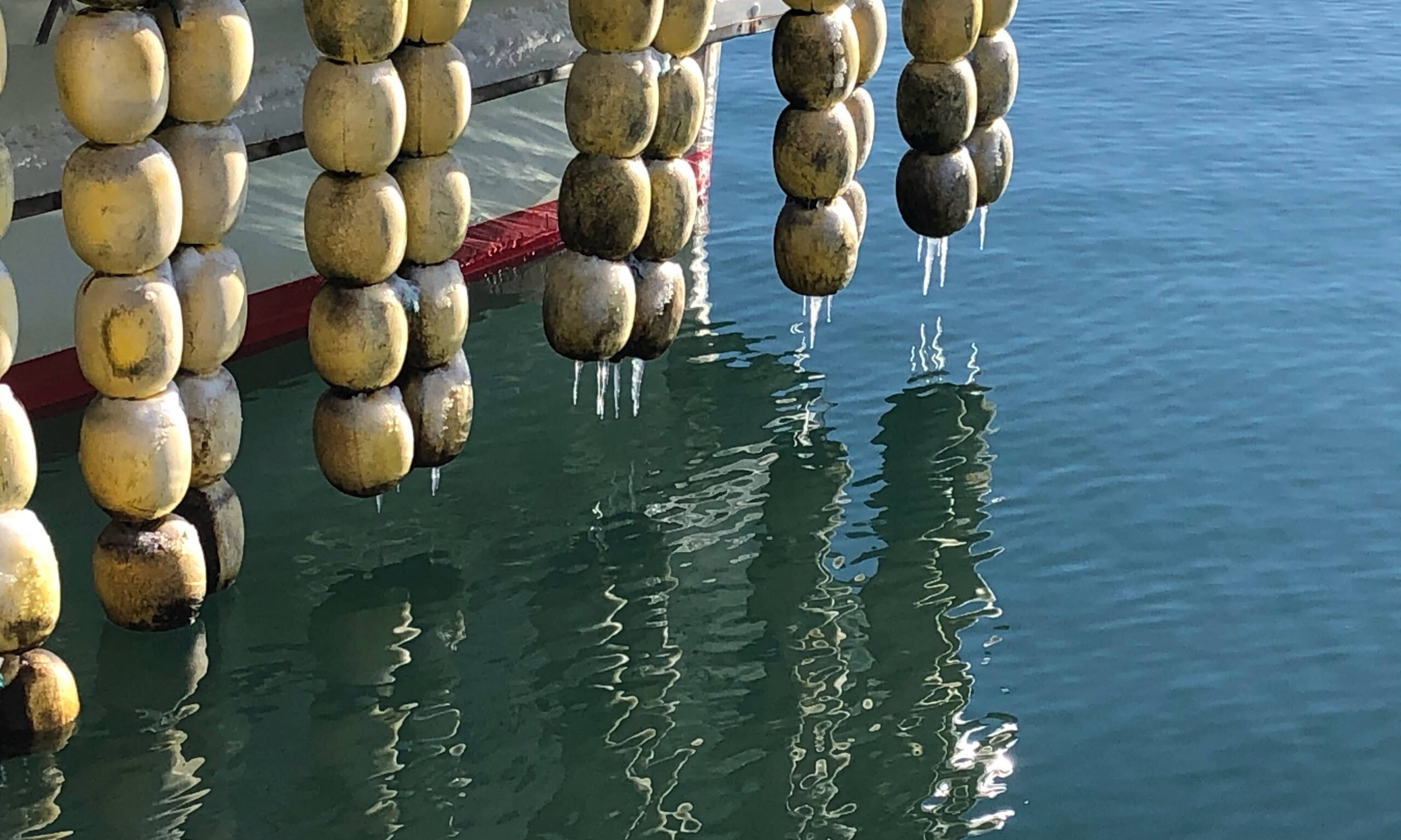八雲漁港 船