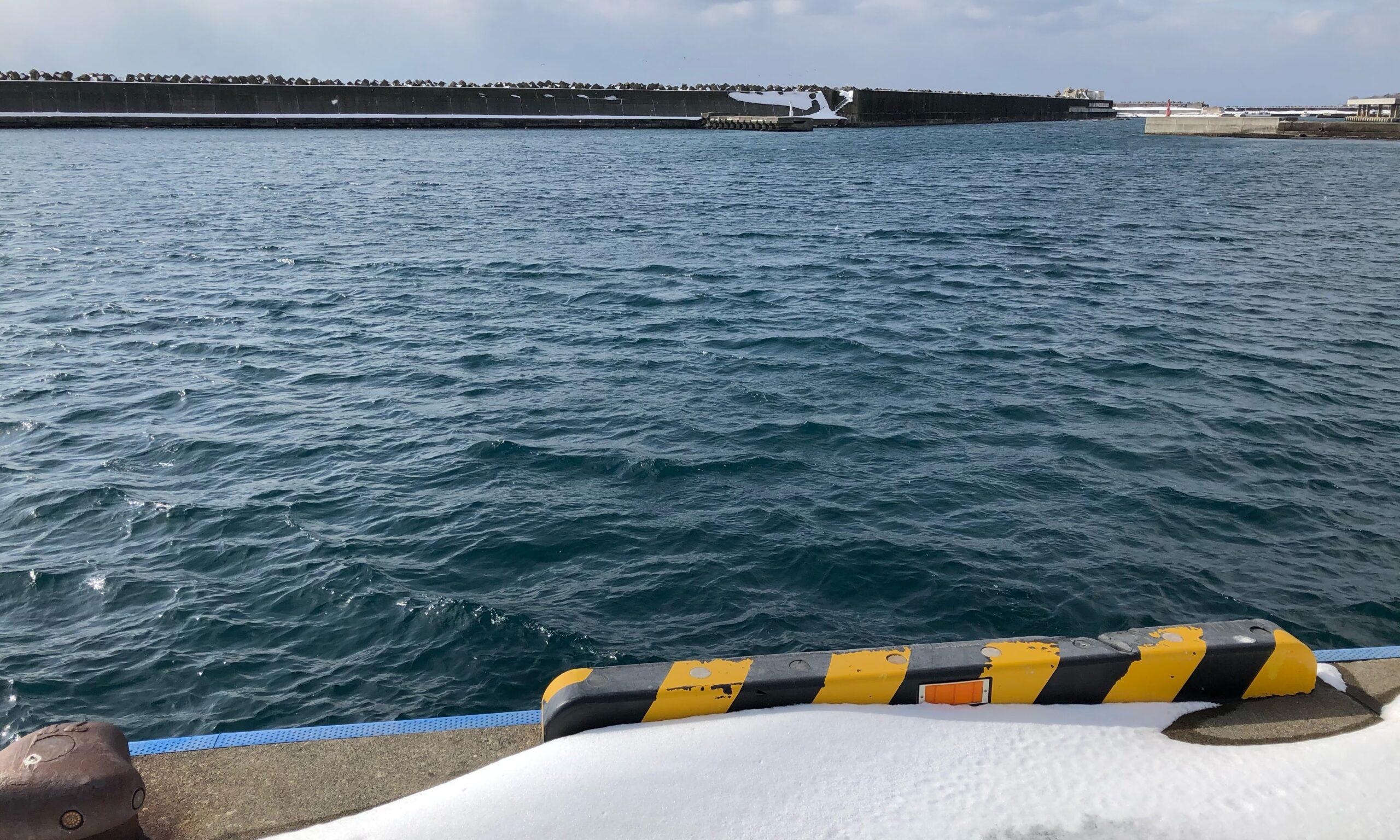 熊石漁港 2月 釣り ホッケ
