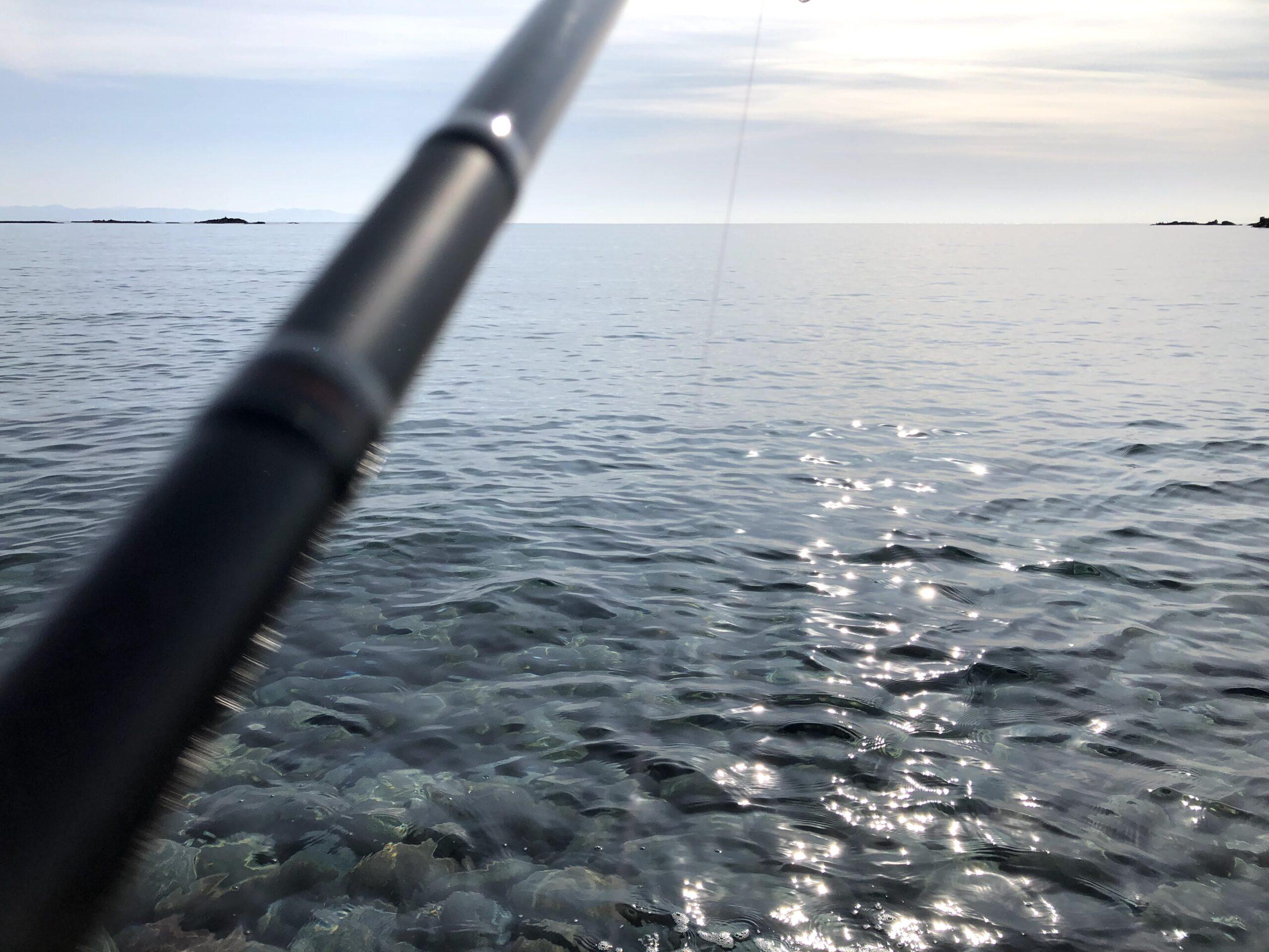 日本海 釣り サクラマス