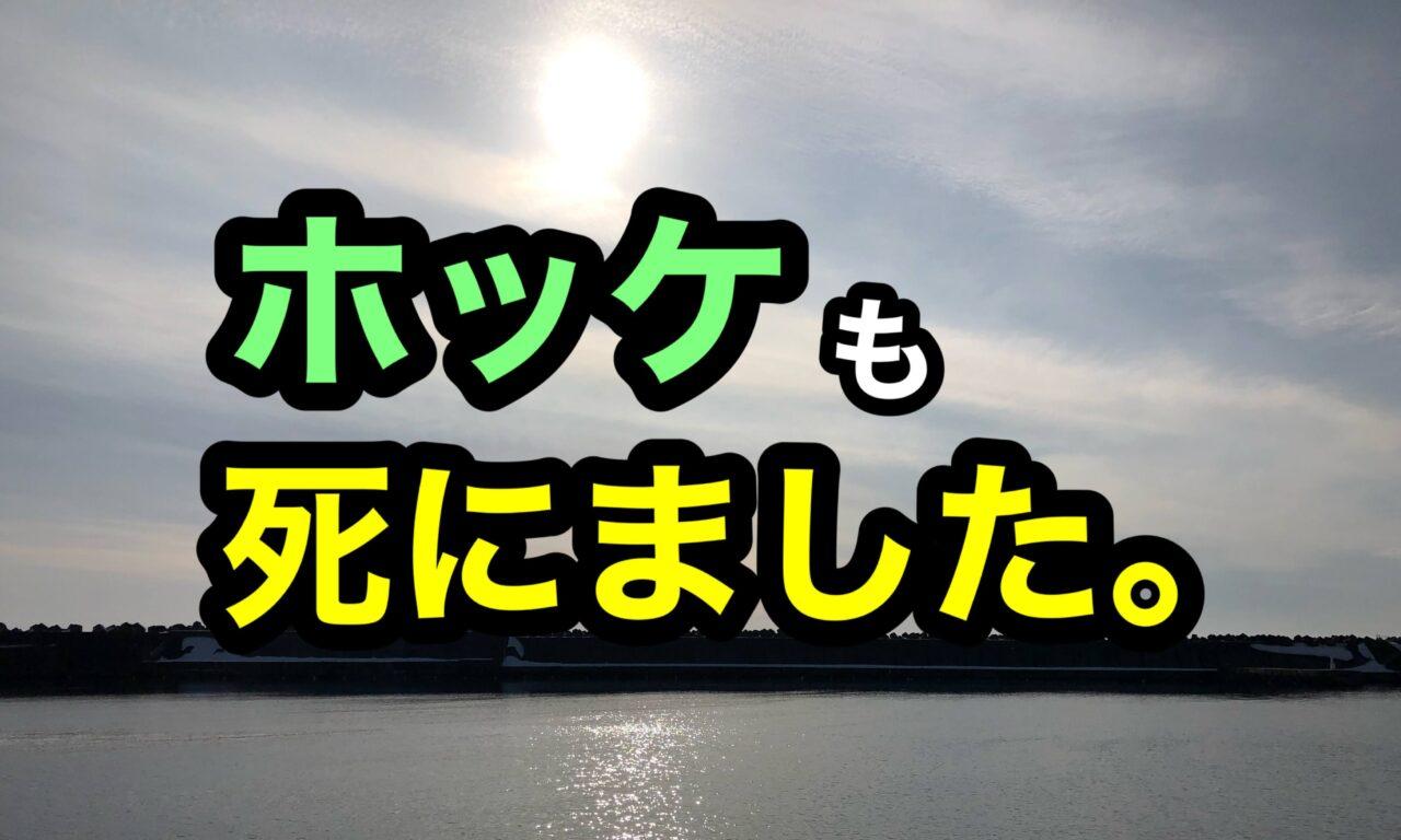 北海道 ホッケ 釣り