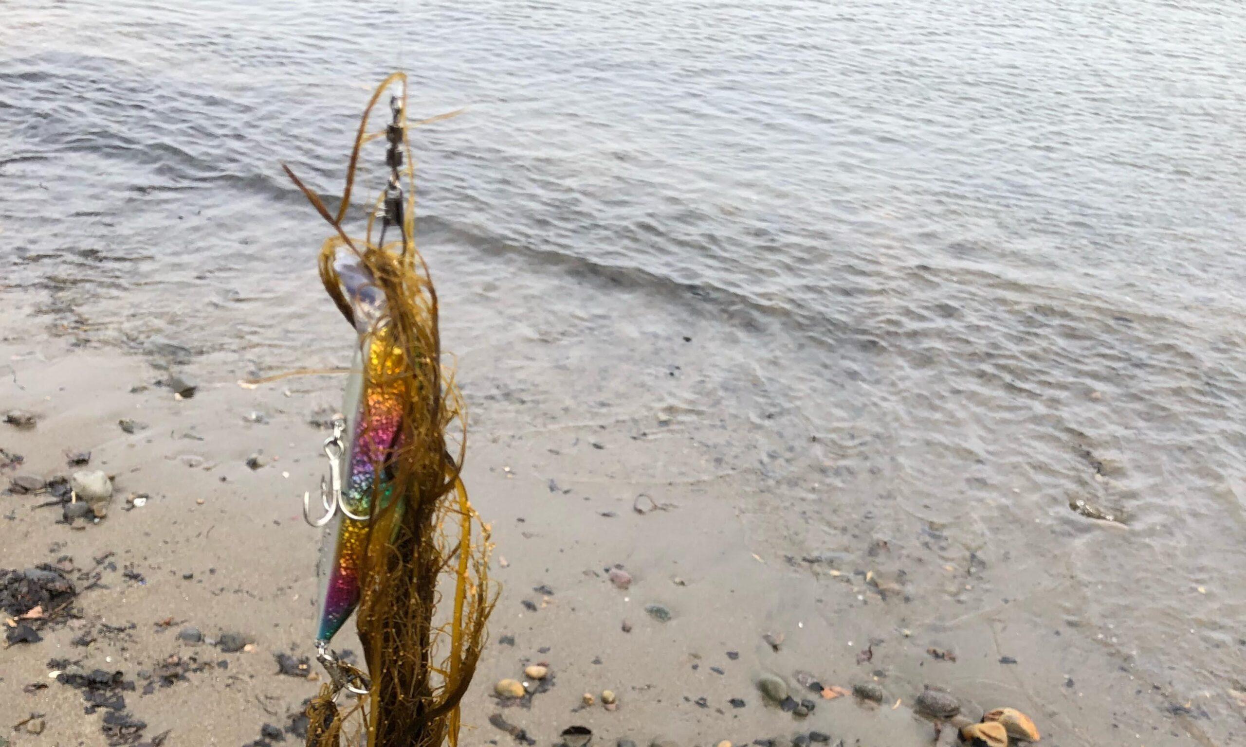 ミノー ゴミ 釣り