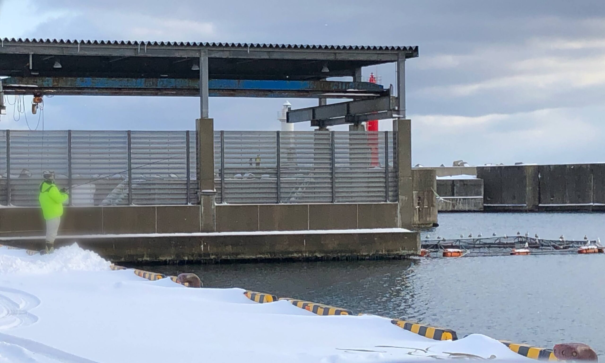 熊石漁港 ホッケ 釣り 2021年 2月