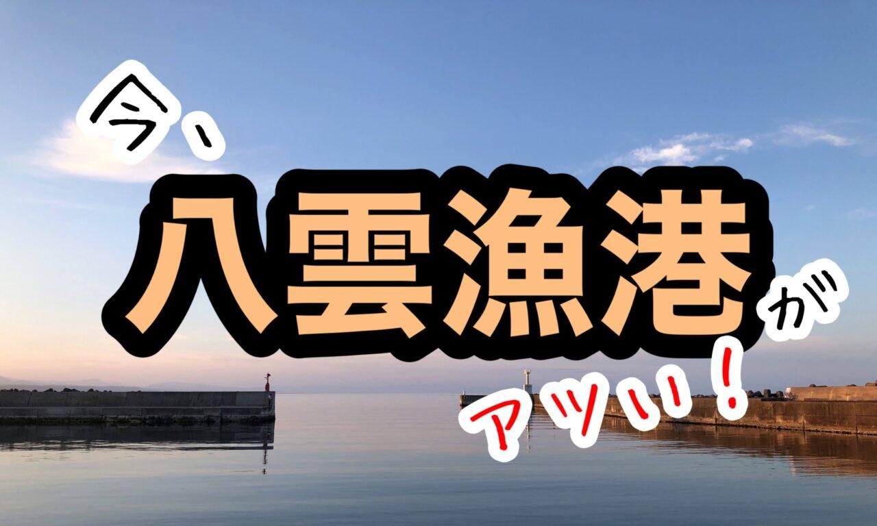 八雲漁港 アブラコ