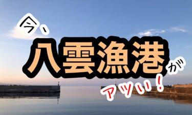 八雲漁港でアブラコ釣り(6月)