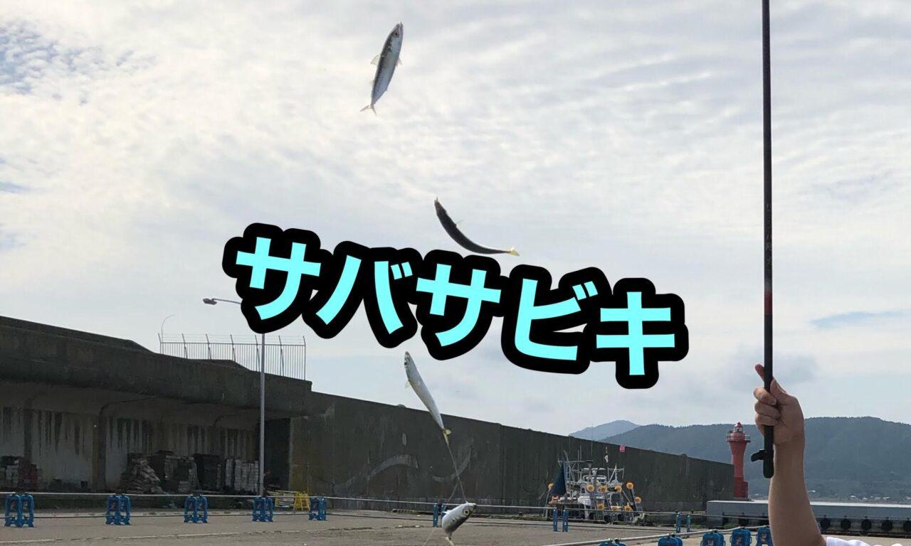 サバサビキ恵山漁港