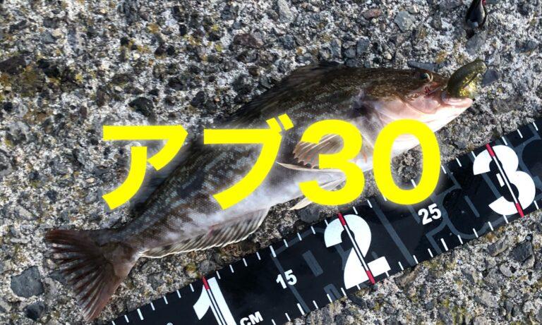 アブラコ2021年8月31日釣り
